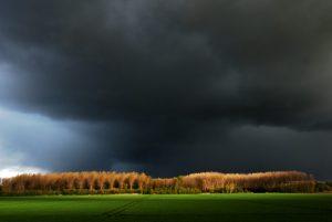 foto_code_11914_Coen-v.d.-Oetelaar